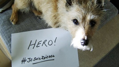 Dogs Used #JeSuisDiesel to Pay Tribute to Police Dog